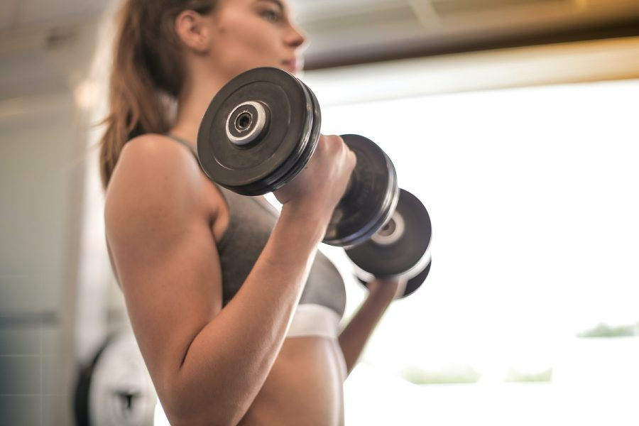 bicep curl workout from home