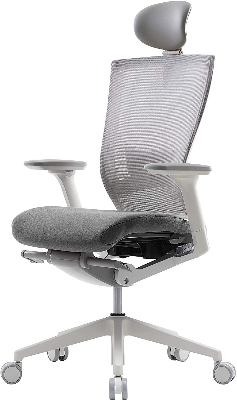 SIDIZ Home Office Ergonomic Chair